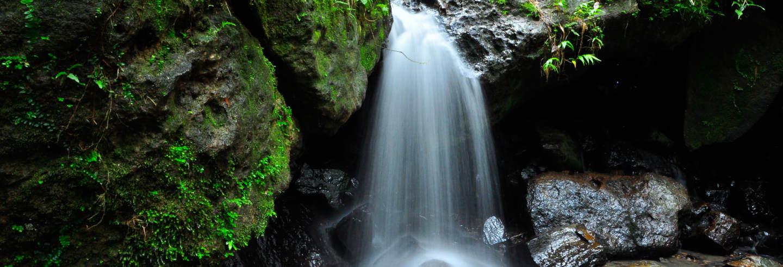 Excursão à cascata Las Delicias e os petróglifos de Zama