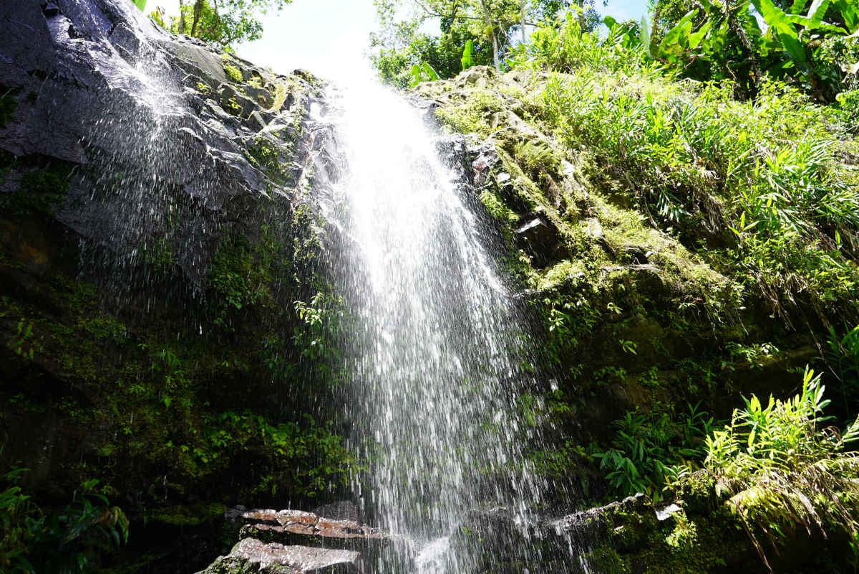 Excursion A Caguas Gurabo Y San Lorenzo Desde San Juan