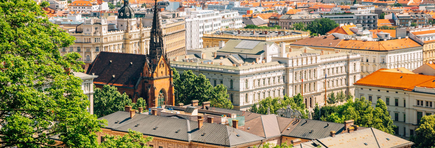 Free Walking Tour of Brno
