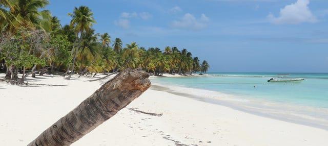 Excursión a la Isla Saona en catamarán