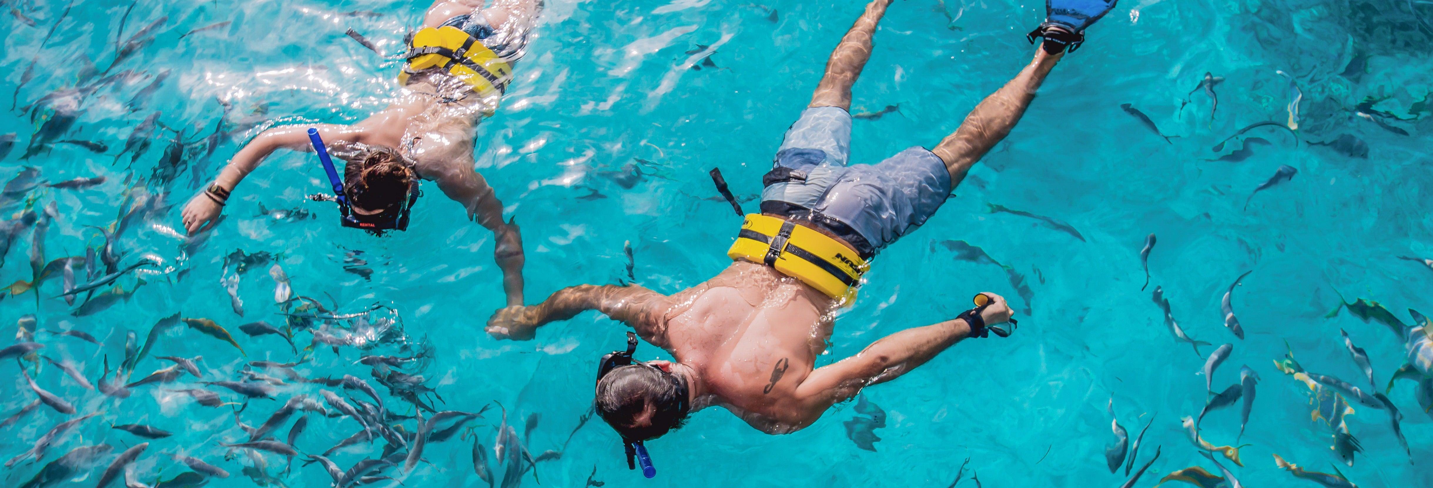 Snorkel en arrecifes de Punta Cana