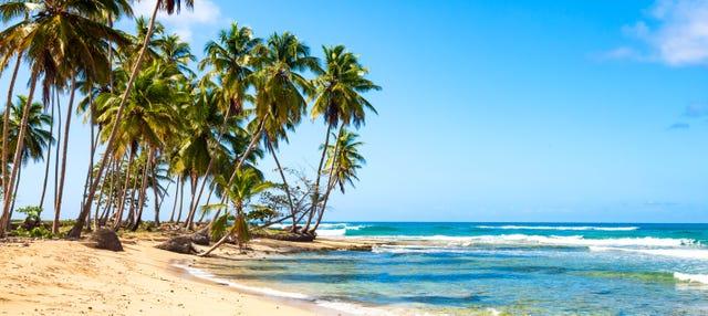 Paseo a caballo en Rancho Caribeño