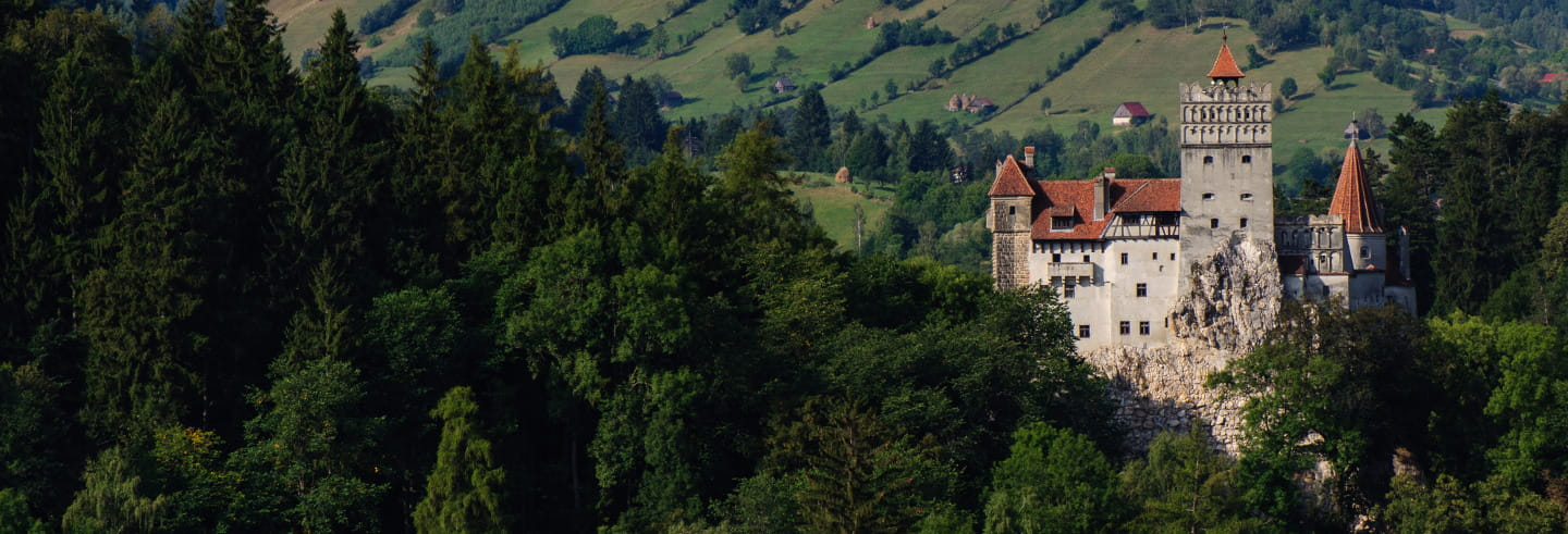 Excursión a los castillos de Bran y Peles