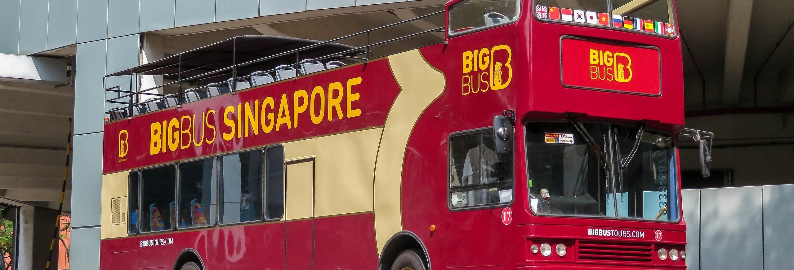 Ônibus turístico de Singapura