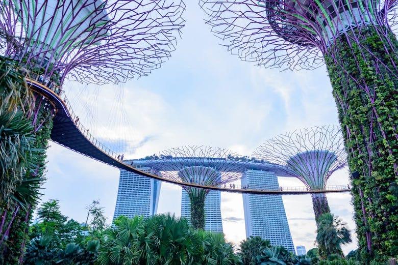 grandi luoghi di incontri Singapore profili di siti di incontri