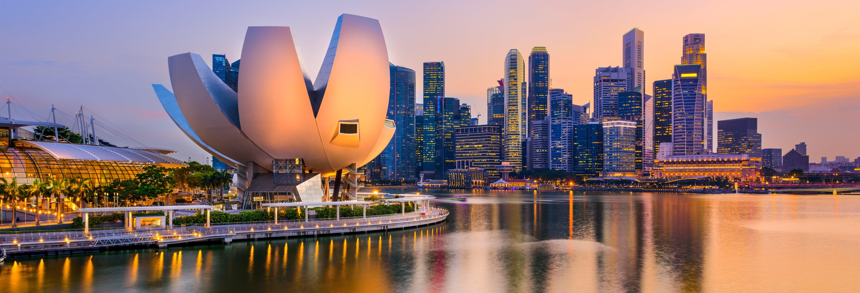 Tour nocturno por Singapur con cena