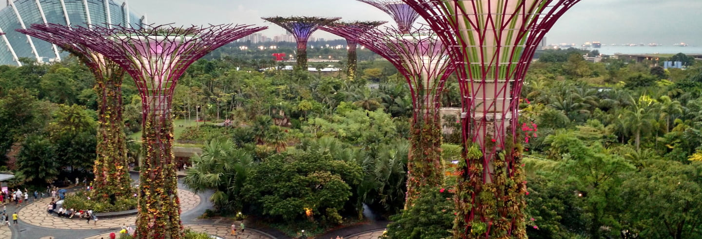 Tour privado por Marina Bay Sands e Gardens by the Bay