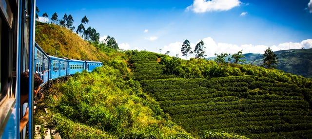 Excursión a Kandy