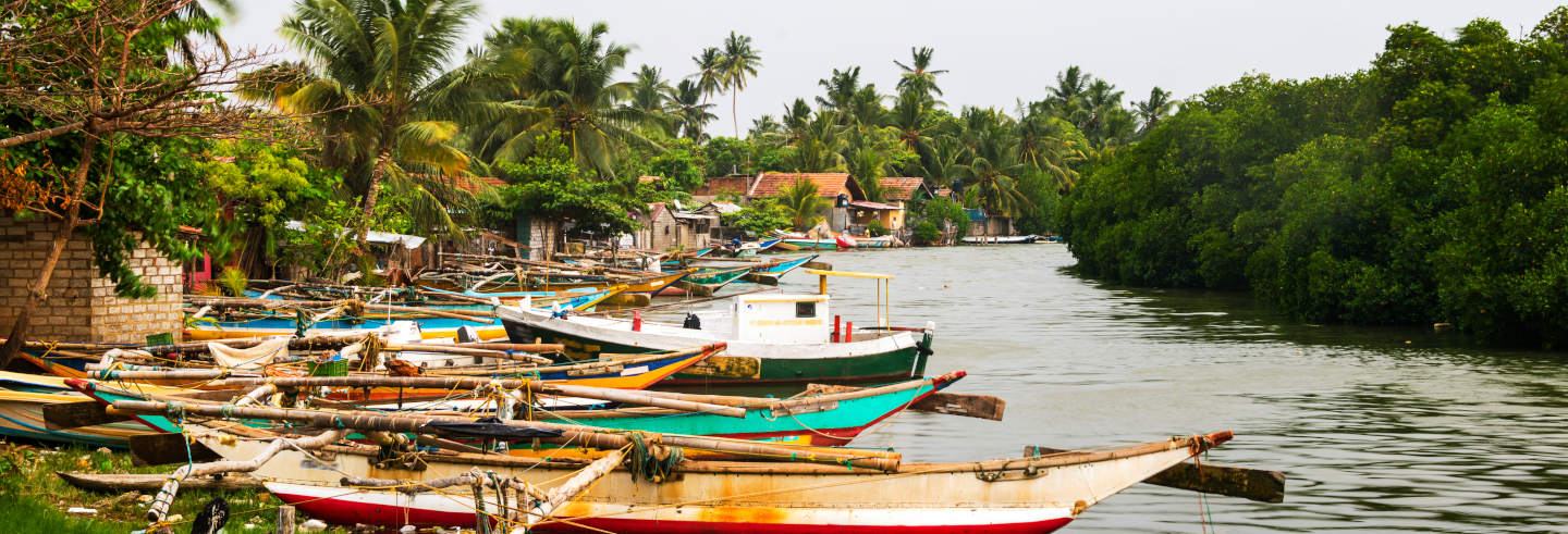 Excursão a Negombo