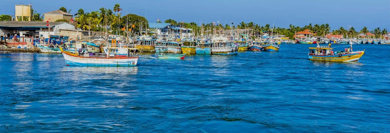 Negombo Tuk Tuk Tour + Boat Trip