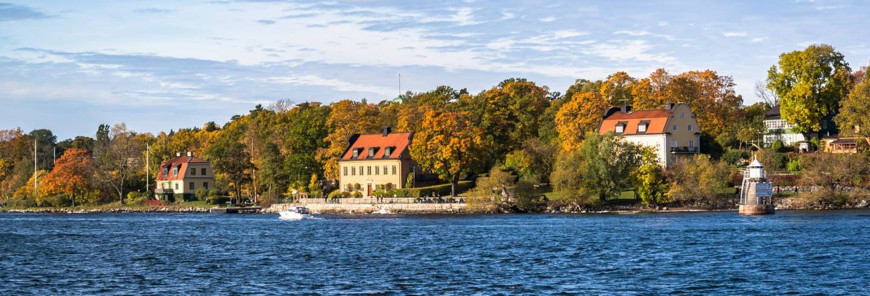 Tour pela ilha de Djurgården
