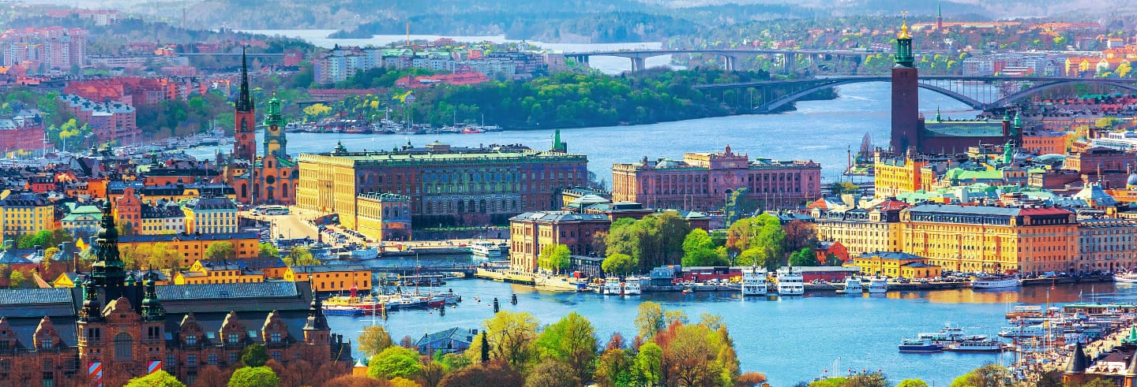 Tour privado por Estocolmo con guía en español