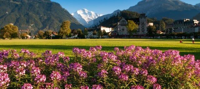 Excursión privada desde Ginebra en español