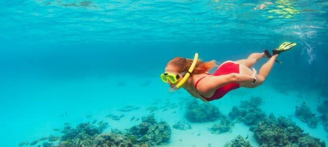 Snorkeling à Koh Kood