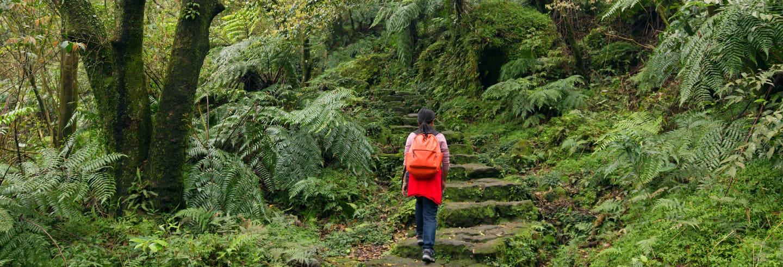 Escursione al Parco Nazionale di Yangmingshan