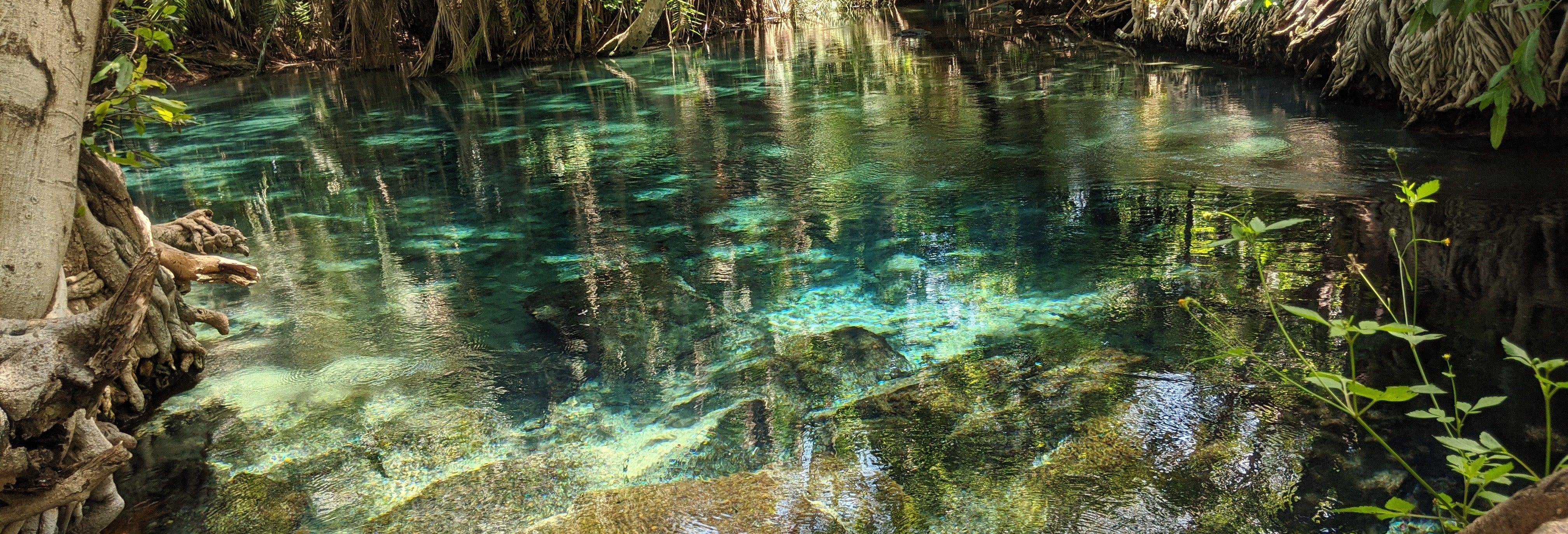 Excursión a las aguas termales de Kikuletwa