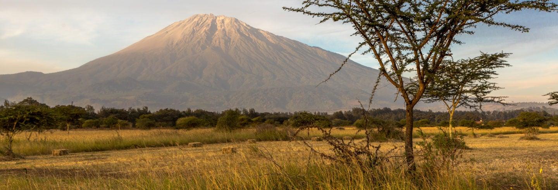 Safari por el Parque Nacional de Arusha