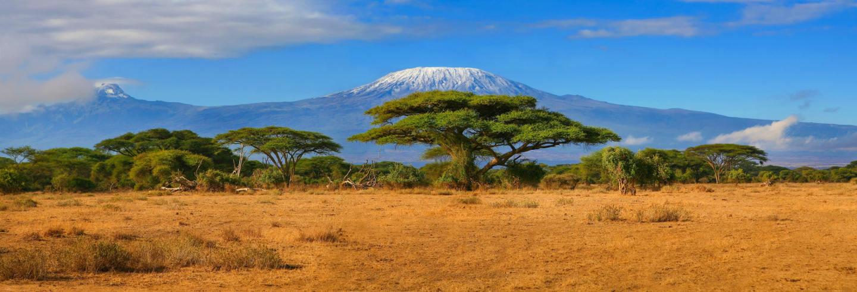 Excursion au Kilimandjaro