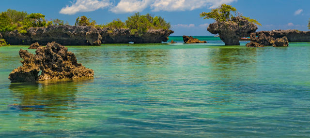 Excursión a la isla Kwale