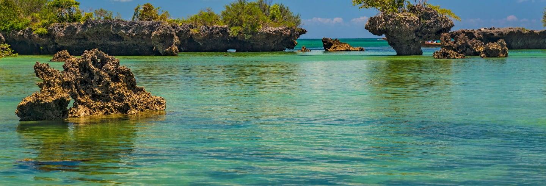 Kwale Island Day Trip