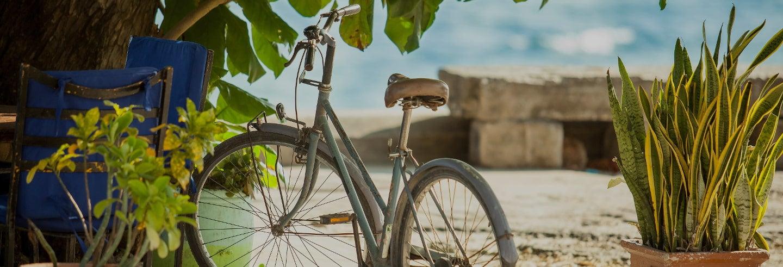 Tour en bicicleta por Stone Town