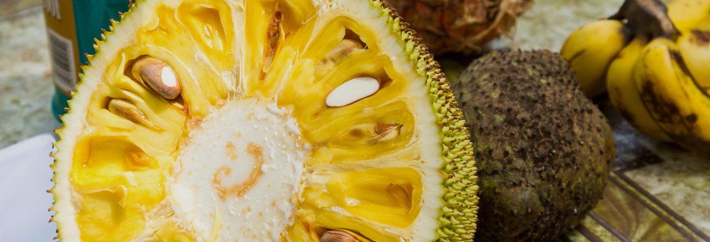 Tour gastronomico di Zanzibar