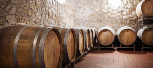 Tour de vinos por Montevideo para cruceros