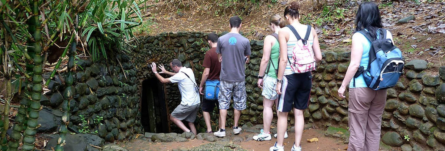 Offer: Cu Chi Tunnels & Mekong Delta Day Trip