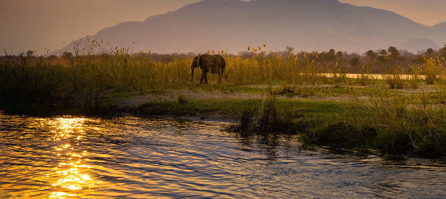 Paseo en barco al atardecer por el río Zambezi